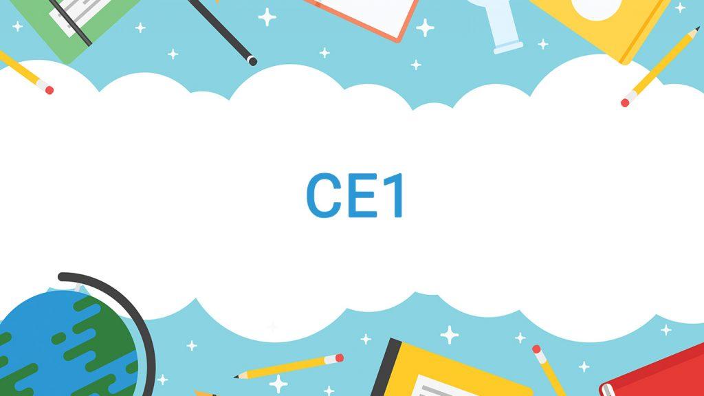 Cour et exercice programme CE1